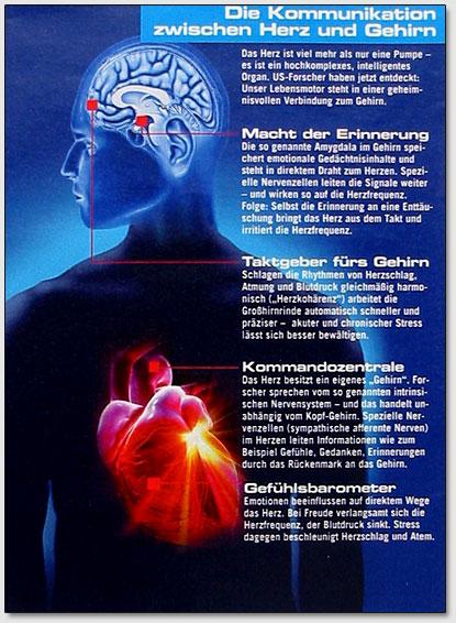 Защита сердца через правильное питание.  Если через питание в организм поступает слишком малое количество калия...