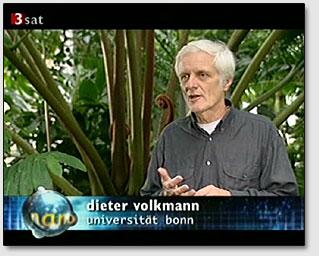 Дитер Фолькман говорит о разумной реакции растений.